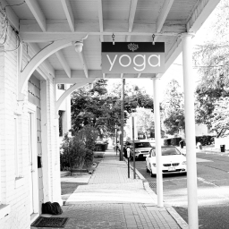 yoga-somervile-nj.jpg